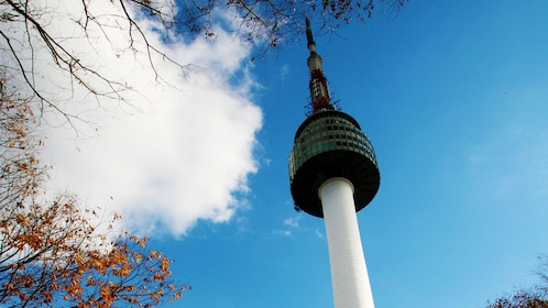 looking up at the North Seoul Tower