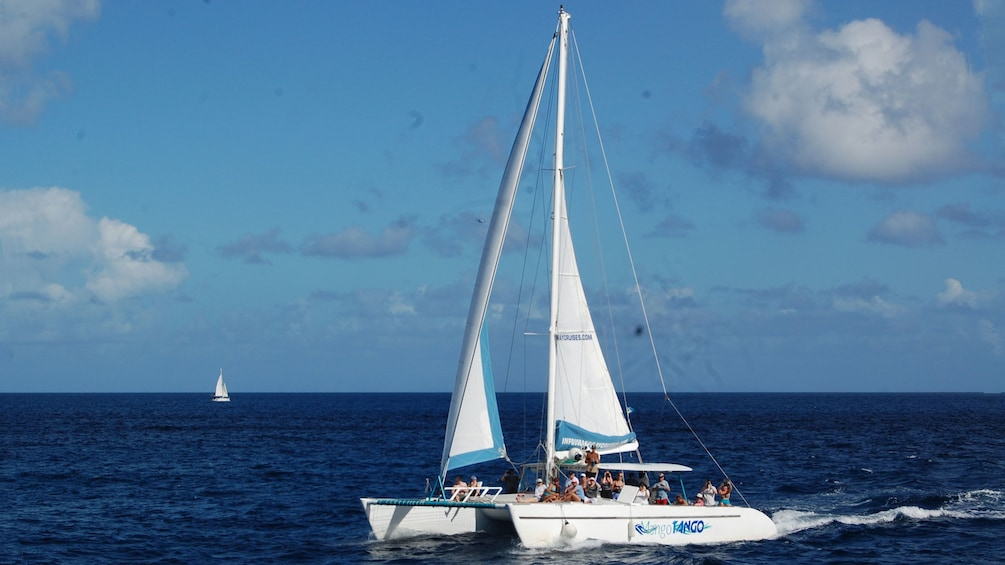 Show item 3 of 9. Catamaran with tour group on the water in Saint Lucia