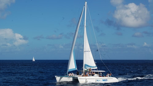 Catamaran with tour group on the water in Saint Lucia