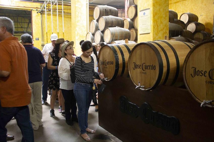 Cargar foto 8 de 8. Tequila with Distillery Tour