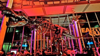 VIP NightLife Tour at the California Academy of Sciences