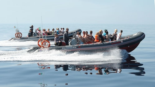 Two inflatable boats with passengers speeding on the water in Algarve