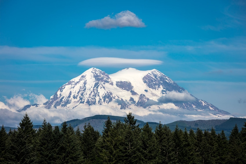 Show item 2 of 10. Mt. Rainier Full-Day Tour