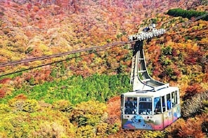 [10% discount] Hakone Komagatake Ropeway coupon (round-trip ticket)