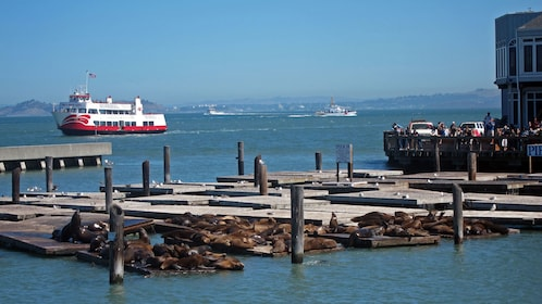 View of docks and tour boat in San Francisco