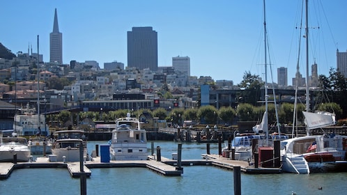 View of city and Marina in San Francisco
