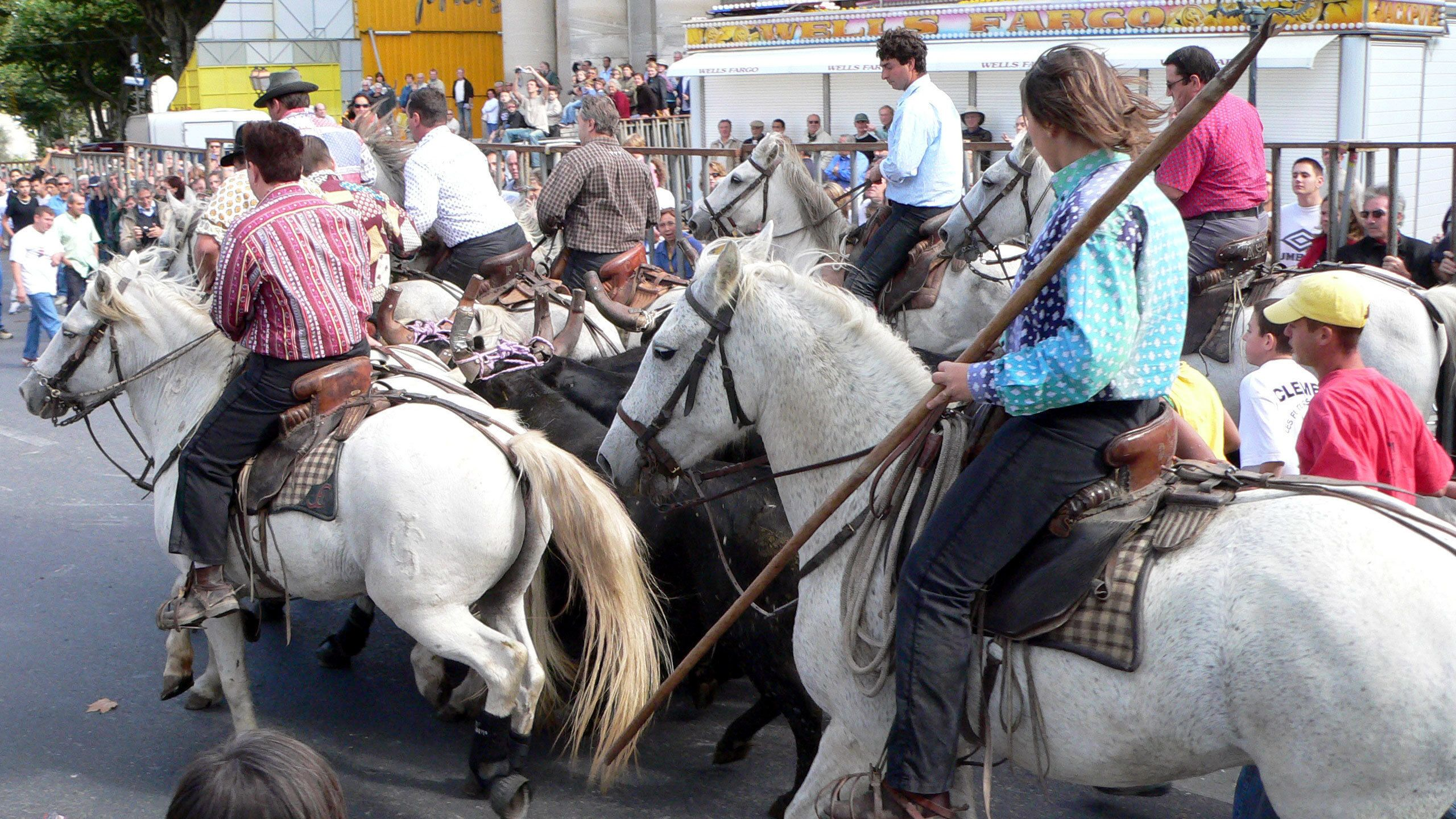 group on horseback on the road in France