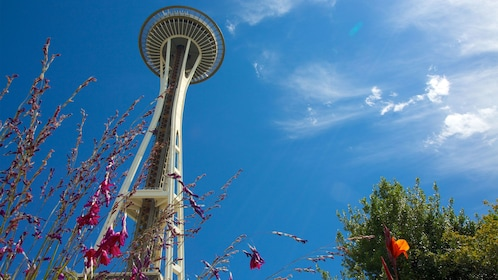 visiting the Space Needle in Seattle