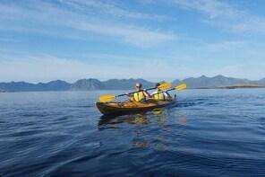 Sea Kayaking from Svolvær