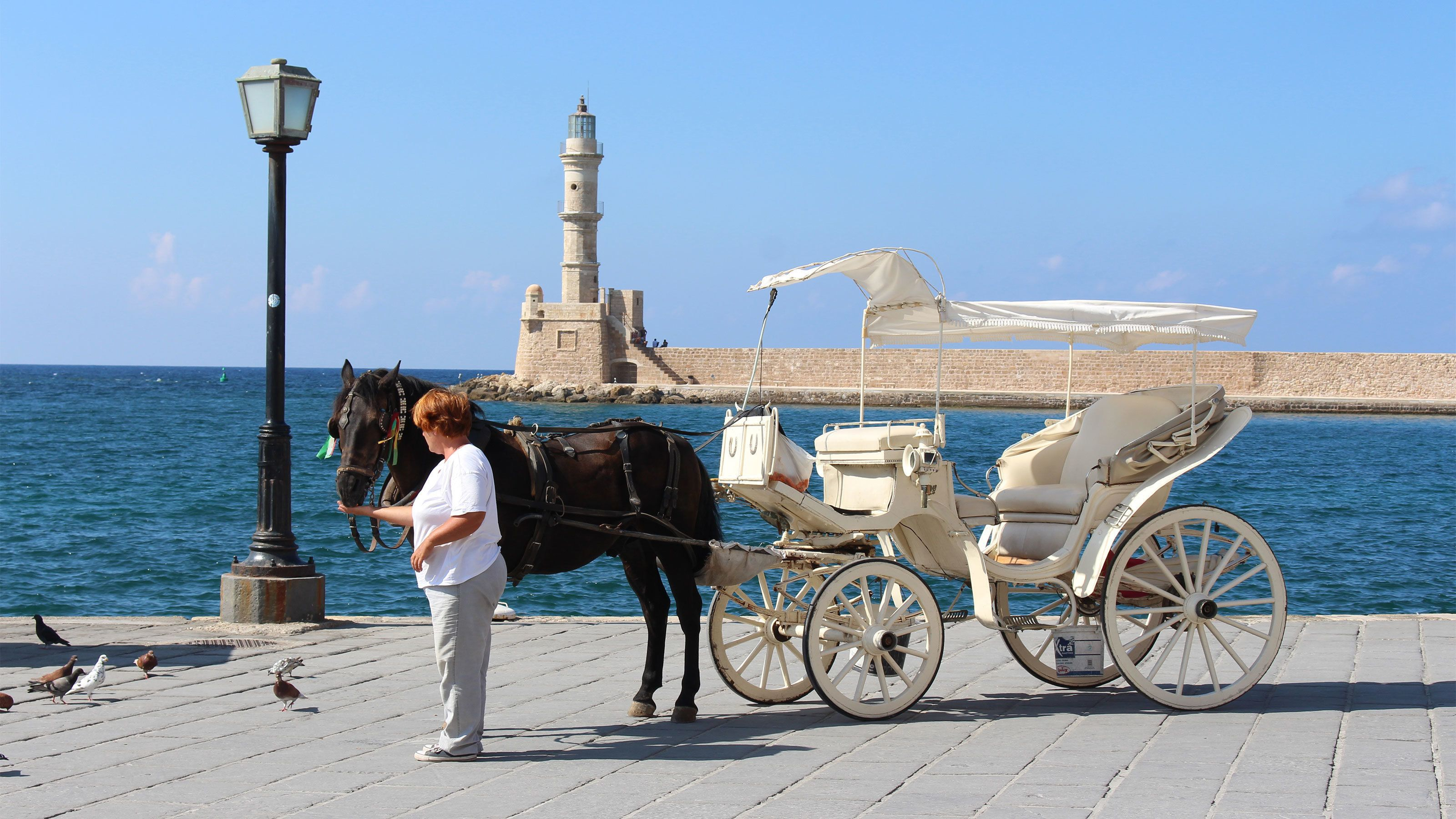 woman feeding carriage pulling horse in Greece