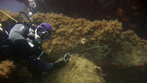 Scuba diver under water in Heraklion
