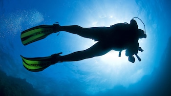 Discovering Scuba Diving in Chania