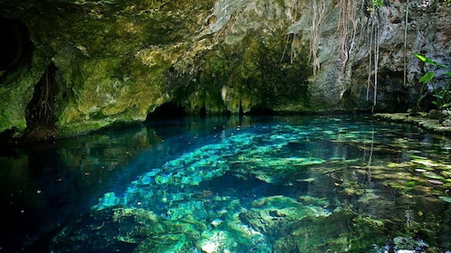 The clear waters of the Grand Cenote in a cave in Mexico