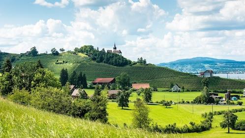 Landscape-Vines-Wine-Chapel-Nature-639107.jpg