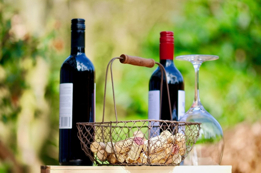 Verona & Amarone Full-Day Tour from Venice with wine tasting