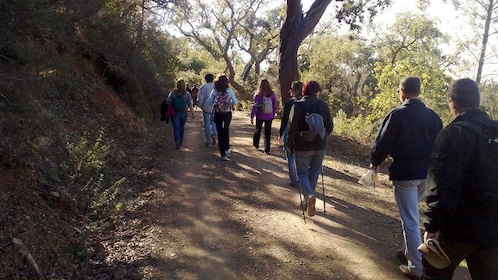 Hiking group hiking on Serra do Caldeirão Mountain in Algarve