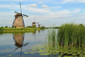 Kinderdijk Windmills from Rotterdam 1/2 day private tour private guide rott...