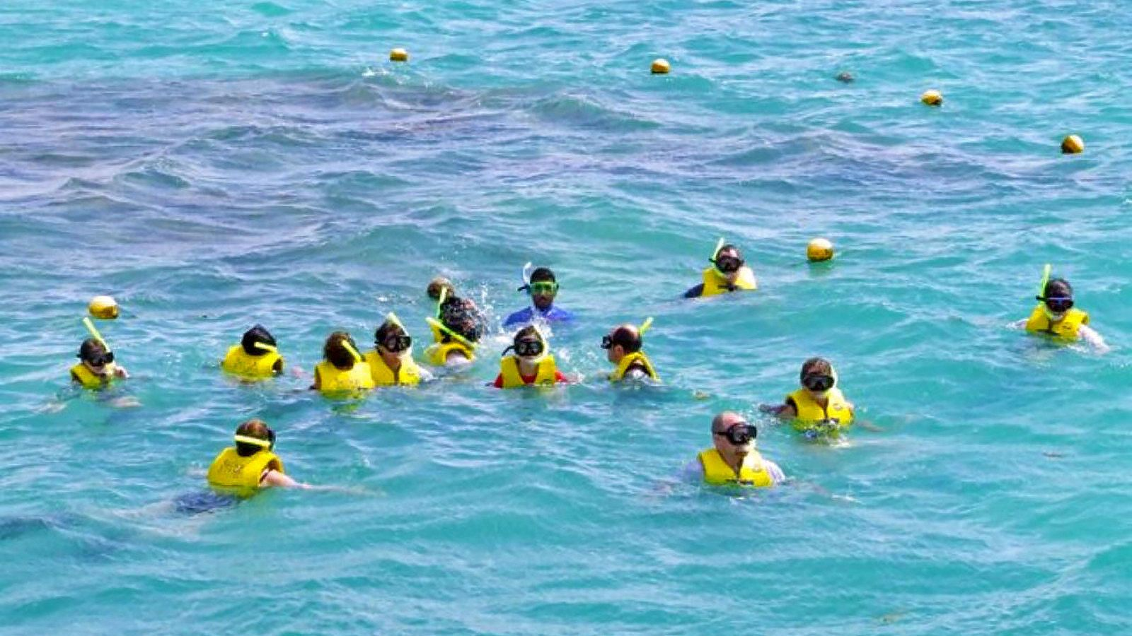Gathering snorklers in Mexico