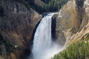 Private Tours of Yellowstone Park