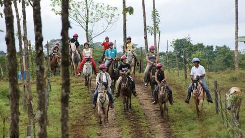 Tourists traveling on horseback through the Cinco Ceibas Rainforest Reserve and Adventure Park