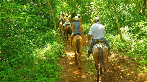 Horse riders going down a trail in Jaco