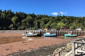 Shore Tours