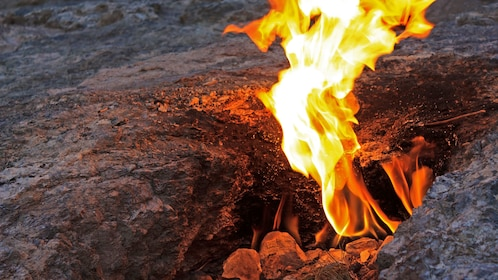 Survival fire making in San Francisco