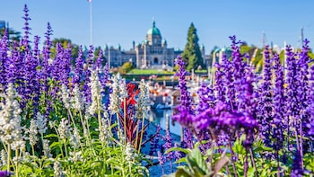 Private Tour of Victoria & Butchart Gardens