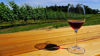 Fraser Valley Private Wine Tasting Tour with Gourmet Lunch