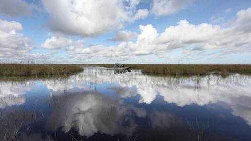 Scenic marshland in Miami