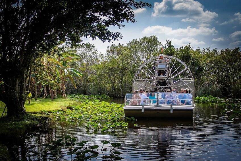 Foto 10 von 10 laden Everglades Airboat Adventure & City Tour