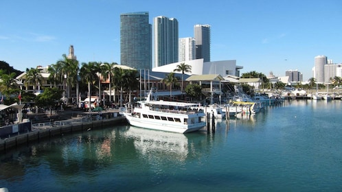 Marina with the Miami skyline in the background