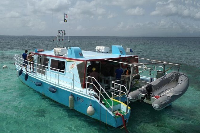 Show item 7 of 7. discovery of the seabed of the largest lagoon in guadeloupe on the h2o boat
