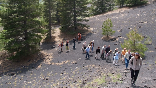 Group hiking through the forest near Mount Etna