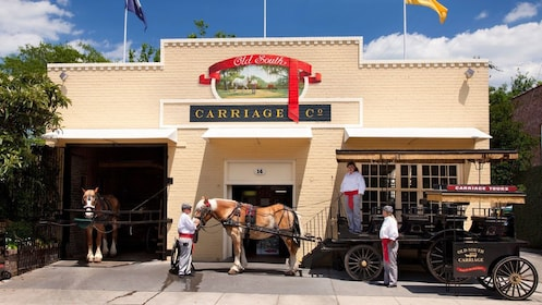 Horse-drawn carriage in Charleston