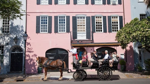 Horse-drawn carriage tour in Charleston