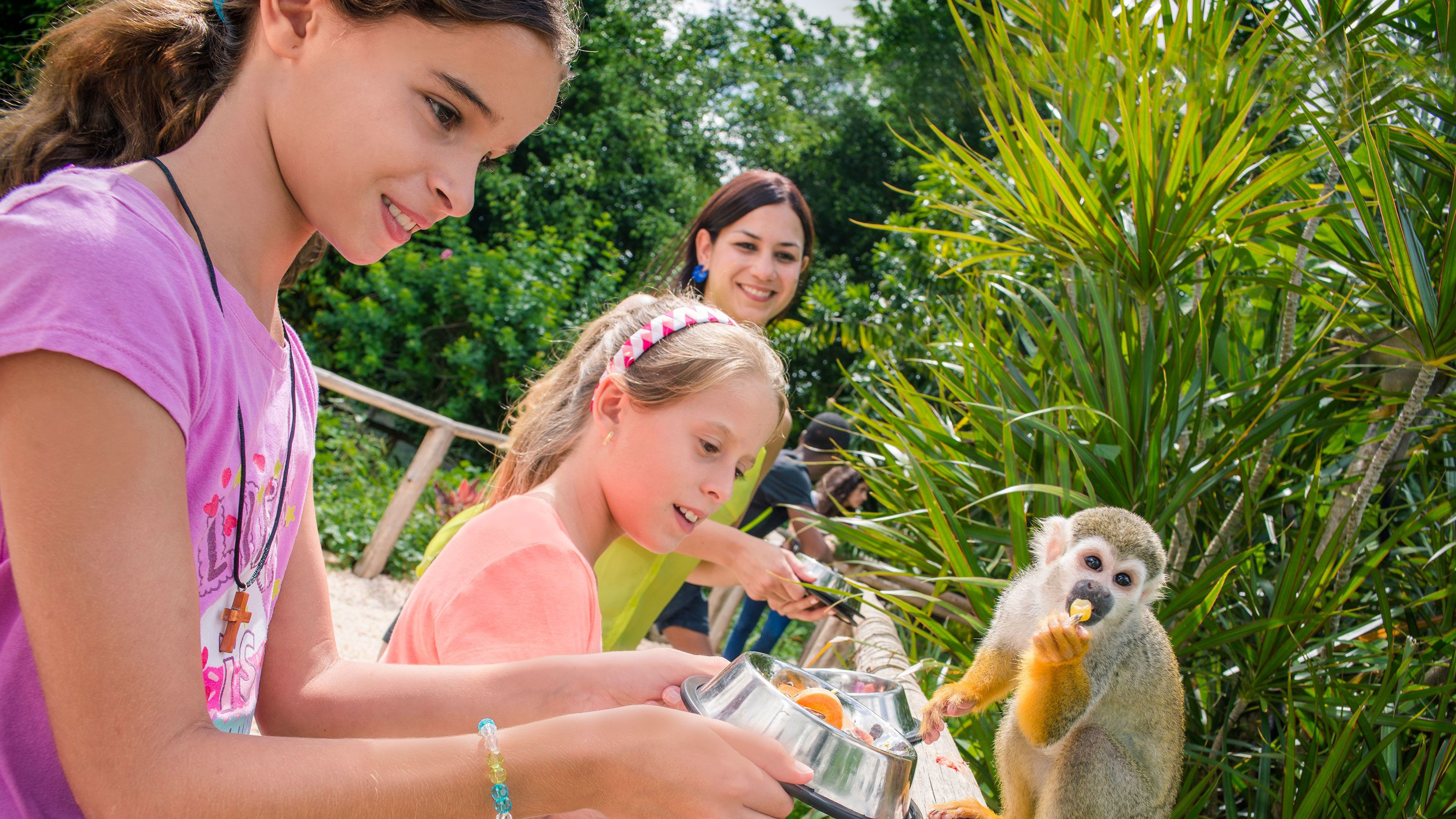 Family feeding monkeys at Monkey Land in Punta Cana