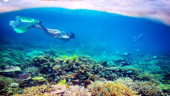 4-Day Cairns & Great Barrier Reef Tour