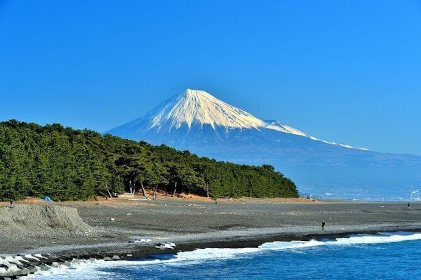 Shizuoka/Shimizu Half-Day Private Tour with Nationally-Licensed Guide