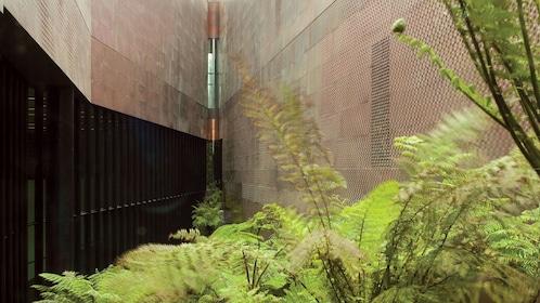 Unique view of The de Young Museum Admission
