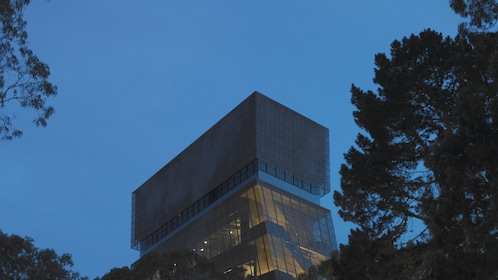 Facility for The de Young Museum Admission