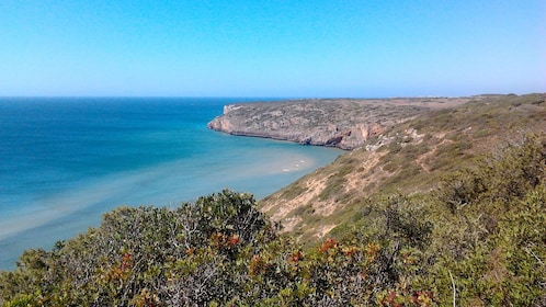 Panoramic view of the cliffs along the coast in southern Portugal