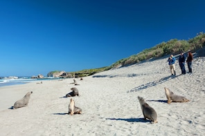 2-Day Kangaroo Island Discovery Tour