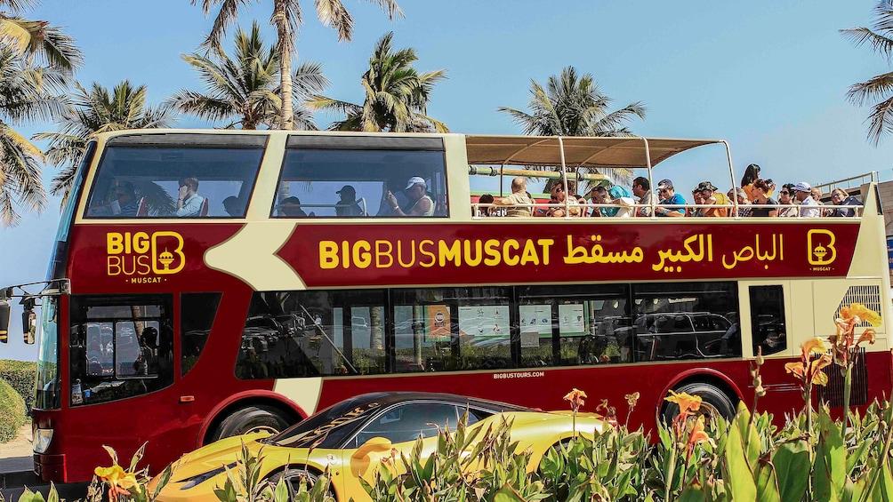 Foto 1 von 9 laden Hop-On Hop-Off bus in Muscat