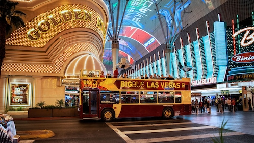 double decker bus stopping by colorfully lit building in Las Vegas