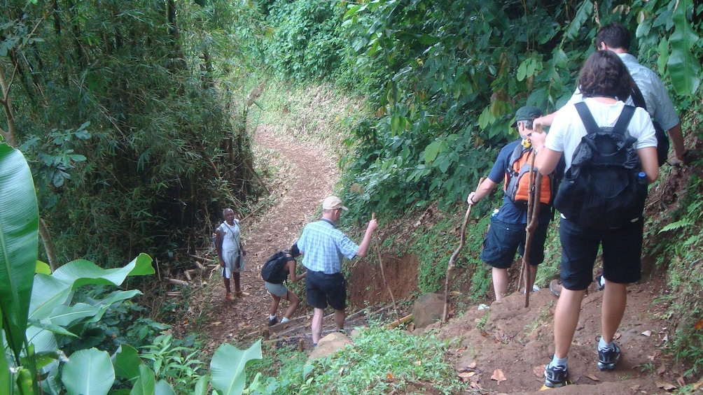 Show item 5 of 5. group hiking down a steep dirt path in Grenada
