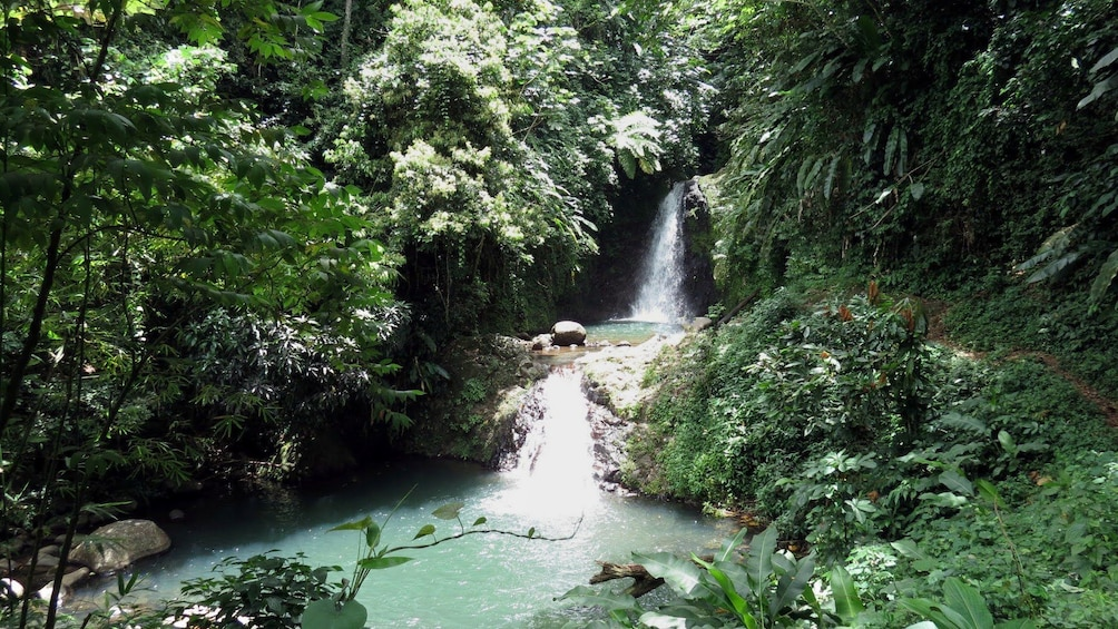 Show item 1 of 5. small waterfall in the forest in Grenada