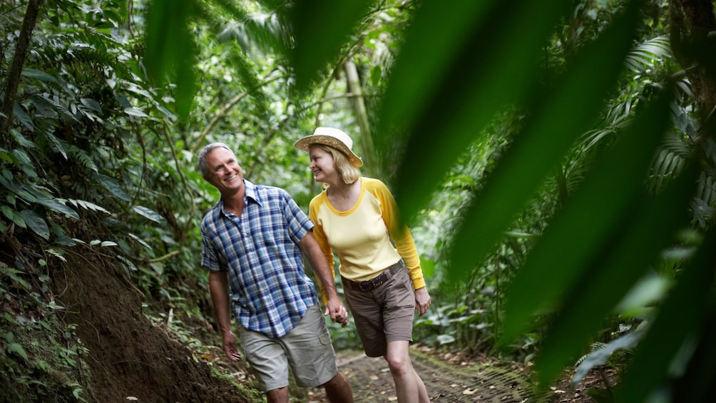 Show item 4 of 5. couple walking through a path in the forest in Grenada