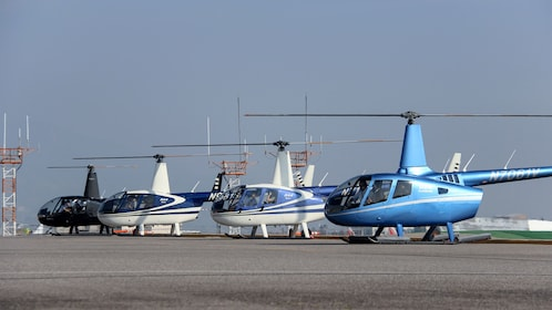 a fleet of helicopter at the landing in Los Angeles