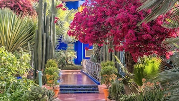 Show item 1 of 5. Stunning view inside the renowned Majorelle and Menara gardens in Marrakech